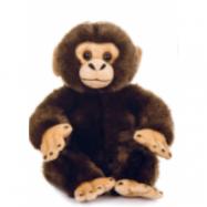 Teddykompaniet, Teddy Wild Schimpans 24 cm