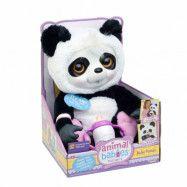 Animal Babies, Mjukdjur med napp&ljud - Baby Panda